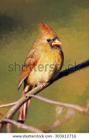 Impressionistic Art of a female Northern Cardinal sitting in Dogwood Tree in winter