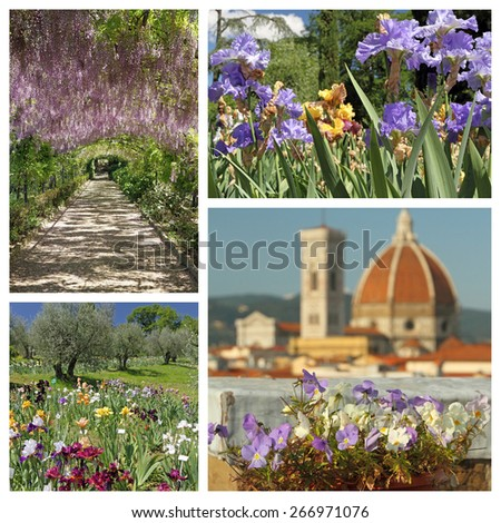 impressive florid Florence in spring - composition, Toscana, Italy, Europe - stock photo