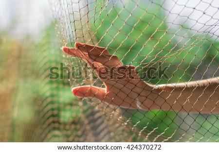 Imprison.Photo Imprison concept.Jail concept. - stock photo