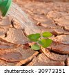 In arid land irrigated - stock photo