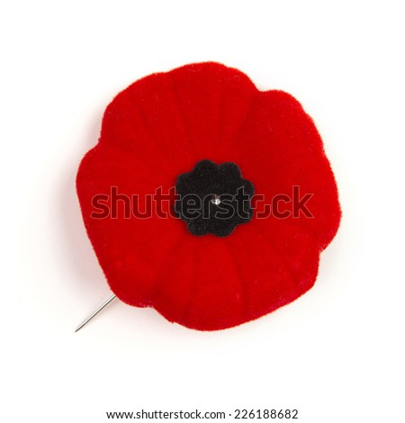 in case we forget / there's november 11 / and the red poppies - stock photo