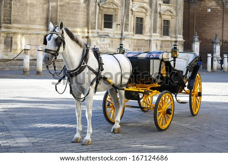 In front of the Cathedral. White horse and traditional tourist carriage in Sevilla - stock photo