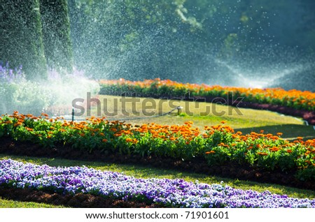 In  garden - stock photo