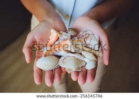 in human hands, women holding beautiful seashells, cone, starfish - stock photo
