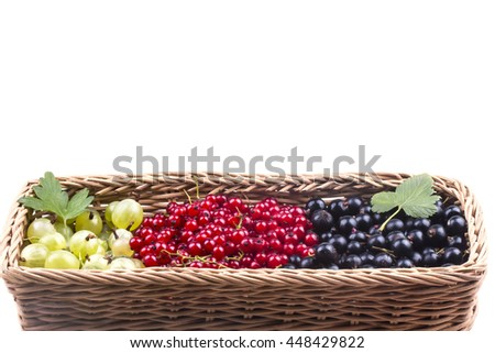 in many different basket of ripe berries - stock photo