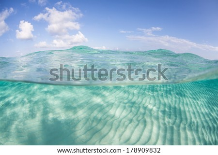 In the Caribbean Sea bright sunlight illuminates a shallow sand flat that is rippled due to currents running across it.