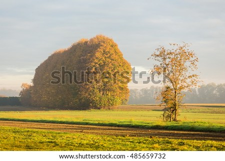 in the countryside during autumn season