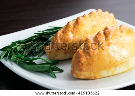 in the field of the second pie with meat with a sprig of greenery - stock photo