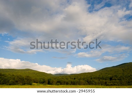 In the foreground a high grass. On a background of a hill and mountain. - stock photo