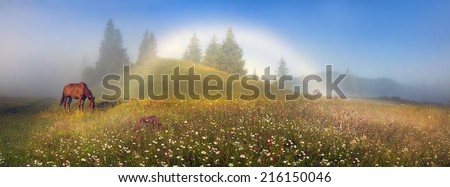 In the mountains you can see the happy symbol- rare natural yavlenie- white foggy rainbow- special kind of halo. Occurs when the projection of the sun's rays on the fog and descendants good weather.  - stock photo