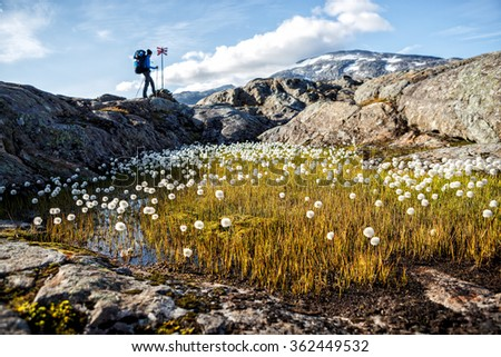 in the Swedisch Mountains - stock photo