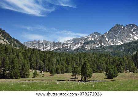 In the upper part of the Vall-de-Madriu-Perafita-Claror there are the high-altitude valleys with the glacial streams, alpine meadows and evergreen forest. - stock photo