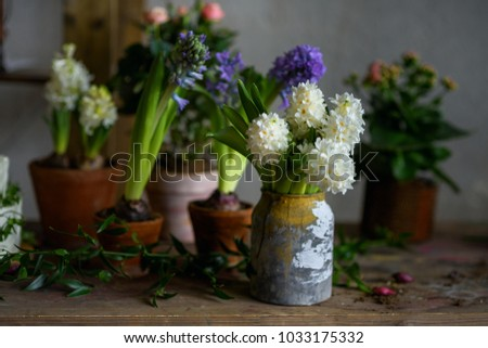 Vintage gardeners workshop decorative flowers pots stock photo in the vintage gardeners workshop decorative flowers in pots botanic style wedding accessories junglespirit Image collections