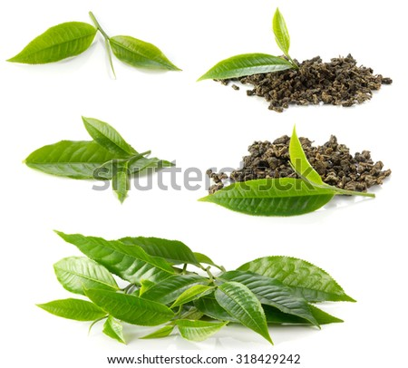 Includes tea leaves and dried tea  on white background. - stock photo