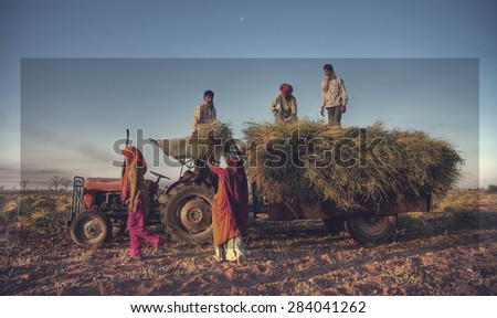 India Family Farming Harvesting Crops Concept - stock photo