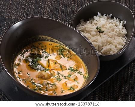 Indian chicken curry with rice - stock photo