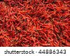 Indian Colorfully Spice. Hot red pepper - stock photo