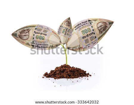 indian currency note growing on plant, money plant, money on tree, currency tree, indian rupee and plant, indian rupee and growth, indian currency and growth concept - stock photo
