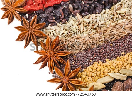 Indian different spices on white - stock photo