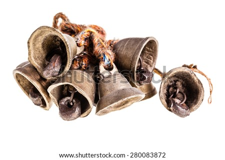 indian small bell cluster isolated over a white background - stock photo