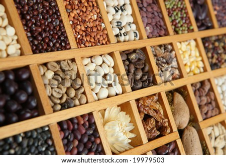 Indian spices, beans and seeds - stock photo