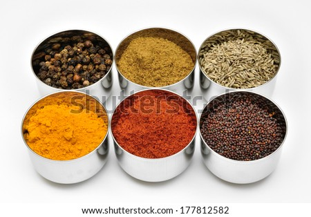 Indian spices in little stainless-steel bowls.
