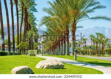Indian Wells City Streets, California, United States. Palms Row. - stock photo