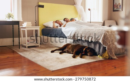 Couple sleeping stock photos images pictures for Dog bed beside bed