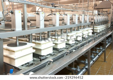 Industrial production of hard cheeses. Cheese is very tasty and healthy product