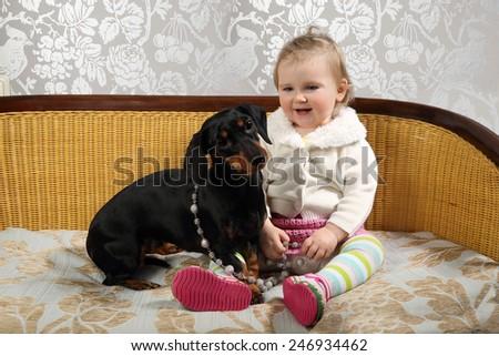 Infant girl sits on sofa together with black basset dog - stock photo