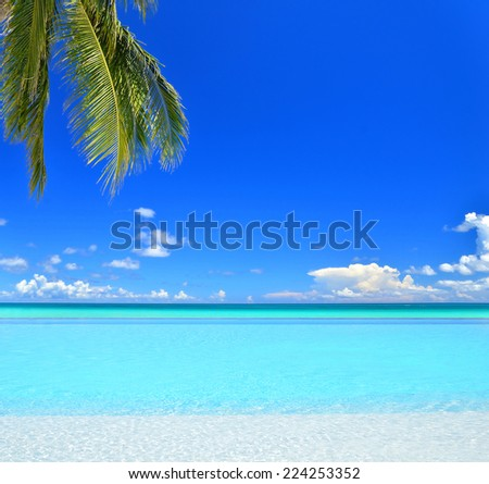 Infinity swimming pool beside tropical sea with blue sky - stock photo