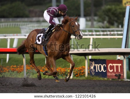 "INGLEWOOD, CA - DEC 15: Jockey Juan Hernandez guides 2 year-old ""Hear The Ghost"" to his first win at Hollywood Park on Dec 15, 2012 in Inglewood, CA. - stock photo"