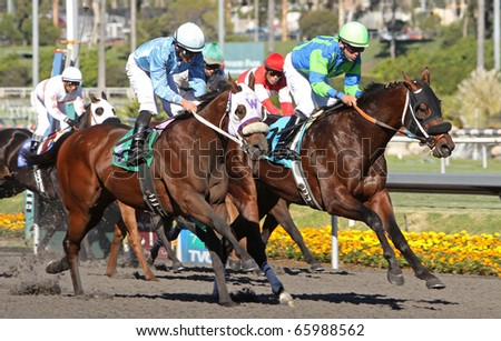 INGLEWOOD, CA - NOV 26: Jockey Patrick Valenzuela pilots Warren's Dove to victory in a claiming race at Hollywood Park on Nov 26, 2010 in Inglewood, CA.