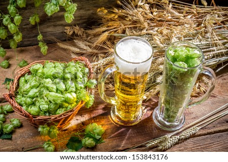 Ingredients for the golden beer with a large foam - stock photo