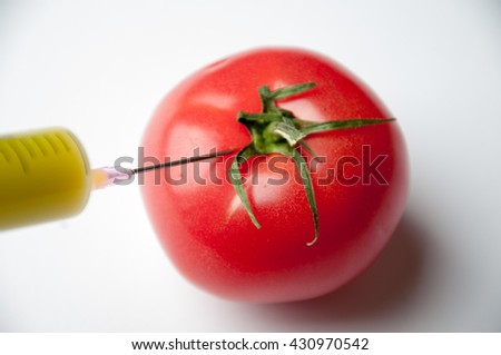 injection of some substance into fresh red tomatoes - stock photo