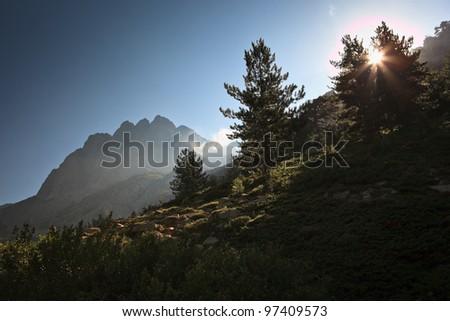 Inland Corsica, splendid Restonica Valley - stock photo