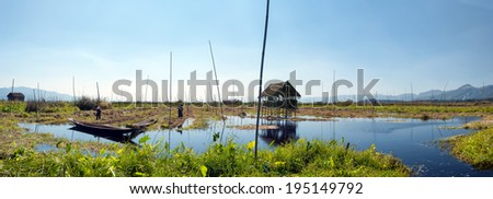 Inle Lake Myanmar, Shan state. Floating gardens of rural Intha village farms on water. Eco nature panorama