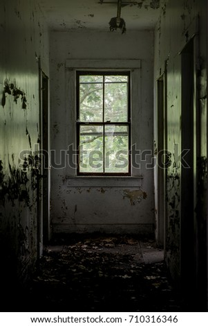 Inside a typical resort room that looks out a large window into the forest at an abandoned resort in the Catskill Mountains of New York.