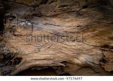 inside brown log wood texture surface background - stock photo