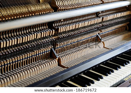 inside the piano: string, pins, keys and hammers