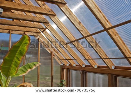 Inside wood greenhouse with banana plant