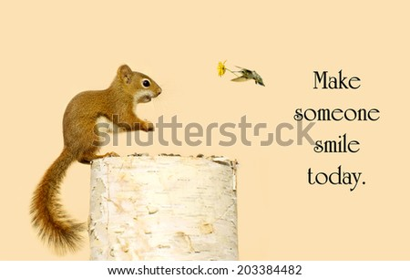 Inspirational message about kindness with a little squirrel happy to be receiving a little flower from his hummingbird friend. - stock photo