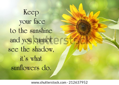 Inspirational quote on life by Helen Keller, with a beautiful sunflower in the sunshine, and bokeh. - stock photo