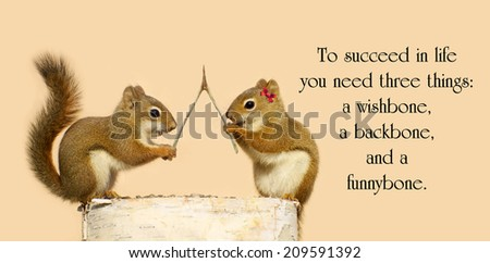 Inspirational quote on life by Reba McEntire with a pair of squirrels with a wishbone, making wishes. - stock photo