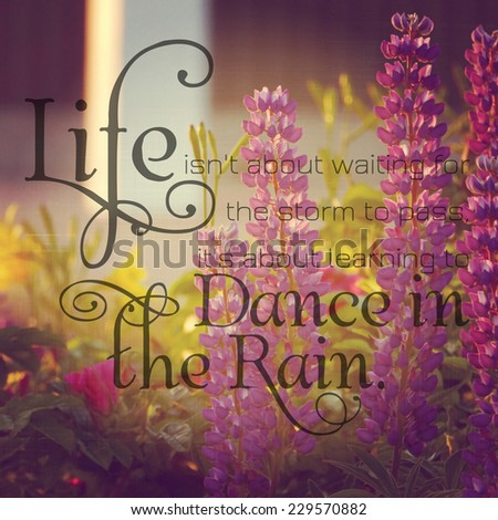 Instagram of lupins with quote - stock photo