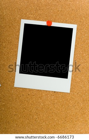 instant transfer photograph on corkboard with plastic pushpins, with clipping paths for image area