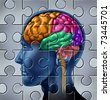 Intelligence and memory symbol represented by a multicolored human brain with a jigsaw puzzle texture. - stock photo