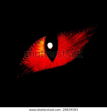 Intense feline eye on a dark background - stock photo