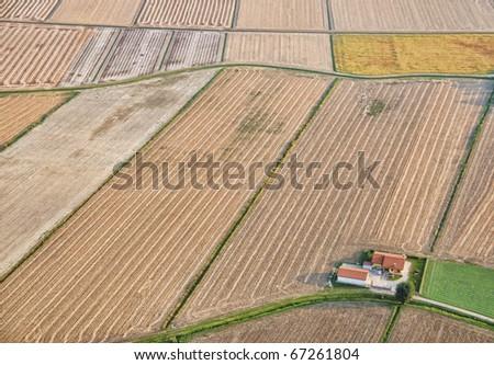 Intensive farming - stock photo