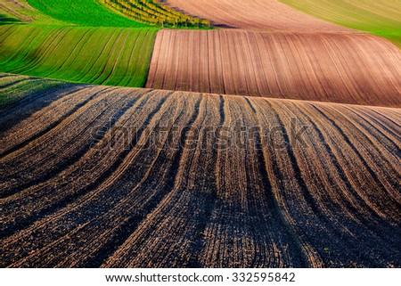 Interesting field pattern - stock photo